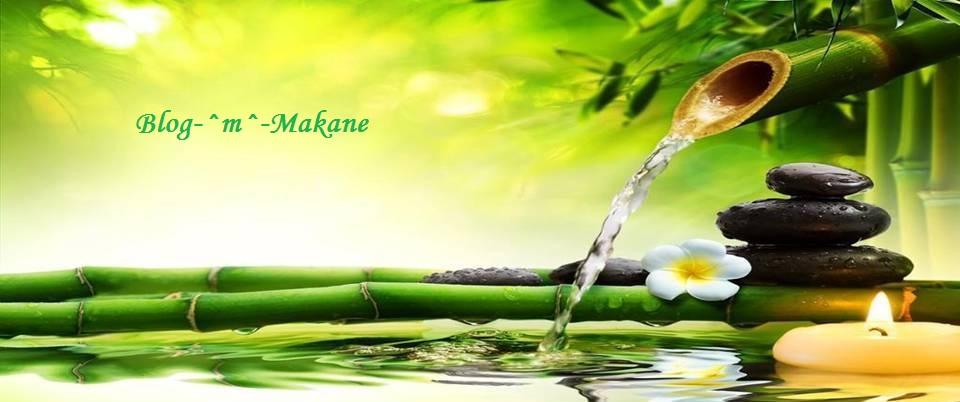 BLOG-^m^-Makane