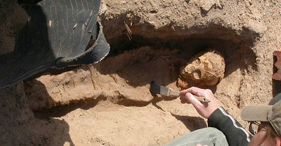 Cemetery reveals baby-making season in ancient Egypt