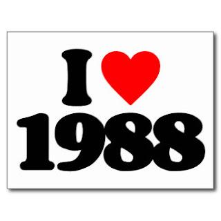 tuvi sinh nam 1988