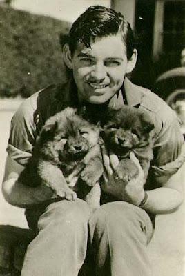 Clark Gable dogs