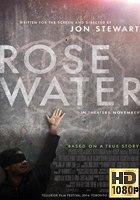 Rosewater (2014) BRrip 1080p Latino-Ingles