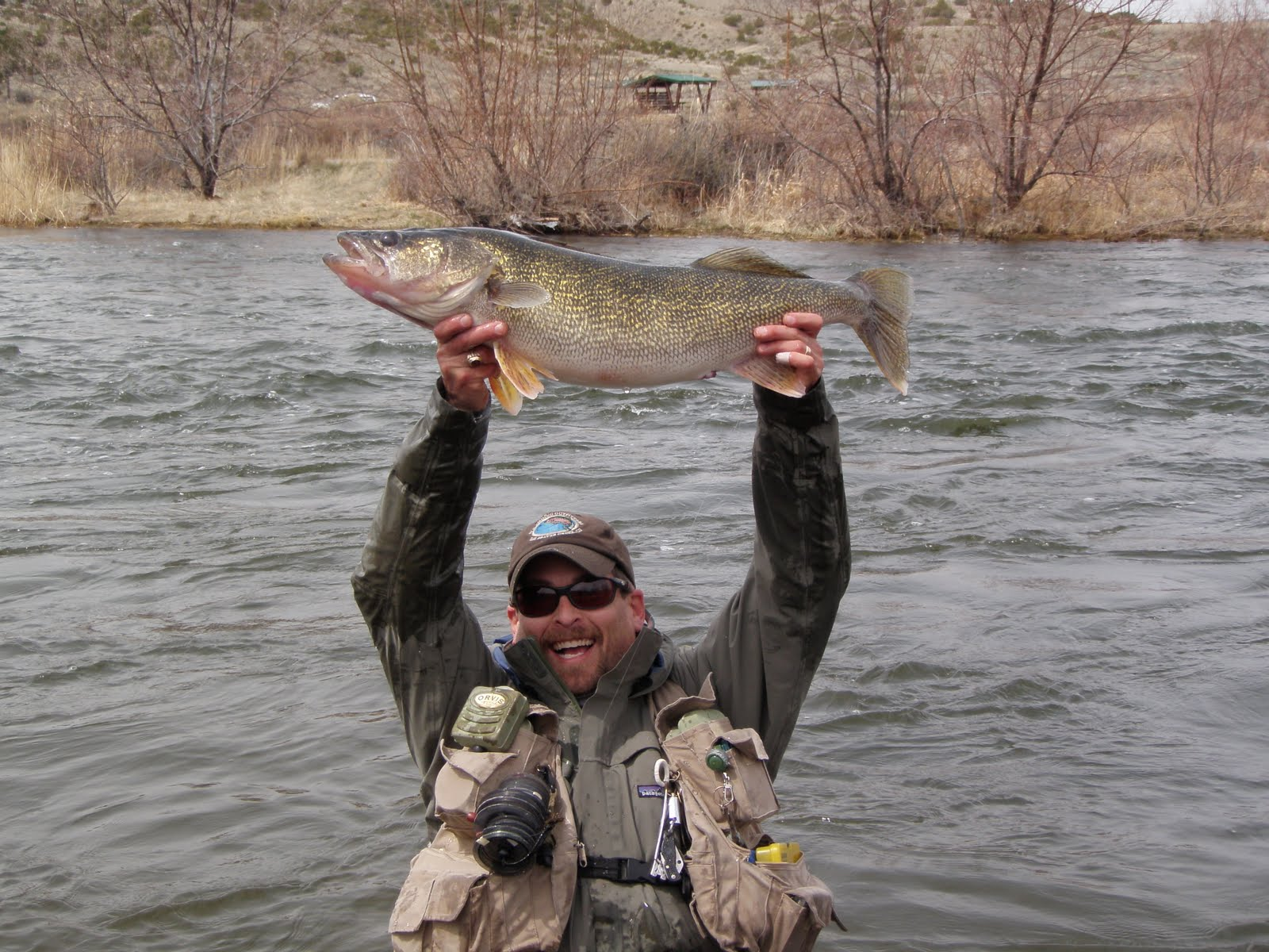 Wyoming fly fisher big walleye on grey reef for Arkansas game and fish fishing report