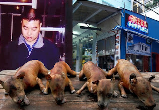 http://freshsnews.blogspot.com/2015/07/9-dogmeat.html