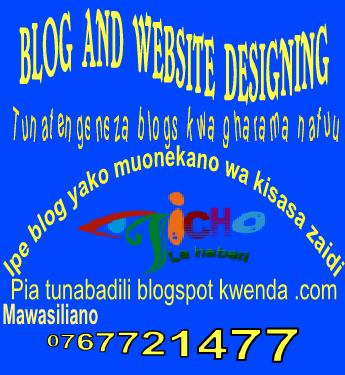 WEBSITE AND BLOG DESIGNING