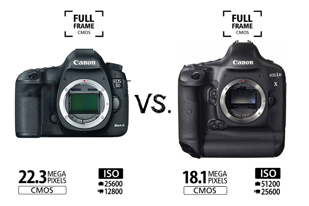 Cameras for Newbies and Dummies - DSLR and Lens Reviews, Comparisons ...