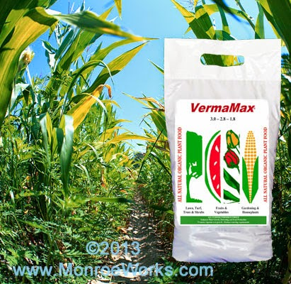 Organic Vermamax (chicken litter and castings) for corn