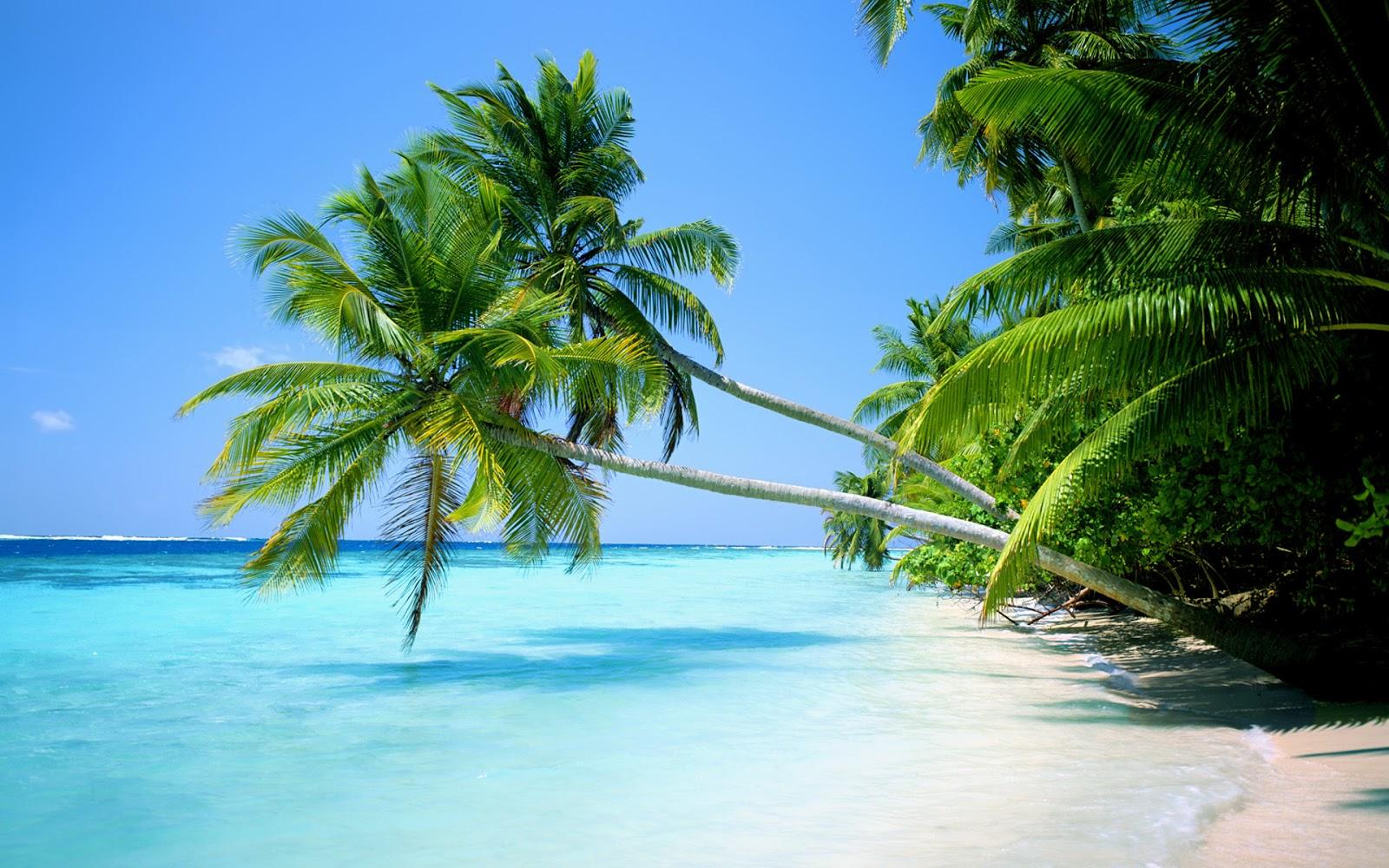 5 playas nudistas que vale la pena visitar La Opinin