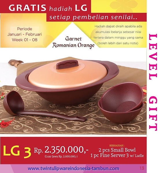 Level Gift 3 Twin Tulipware Januari 2016