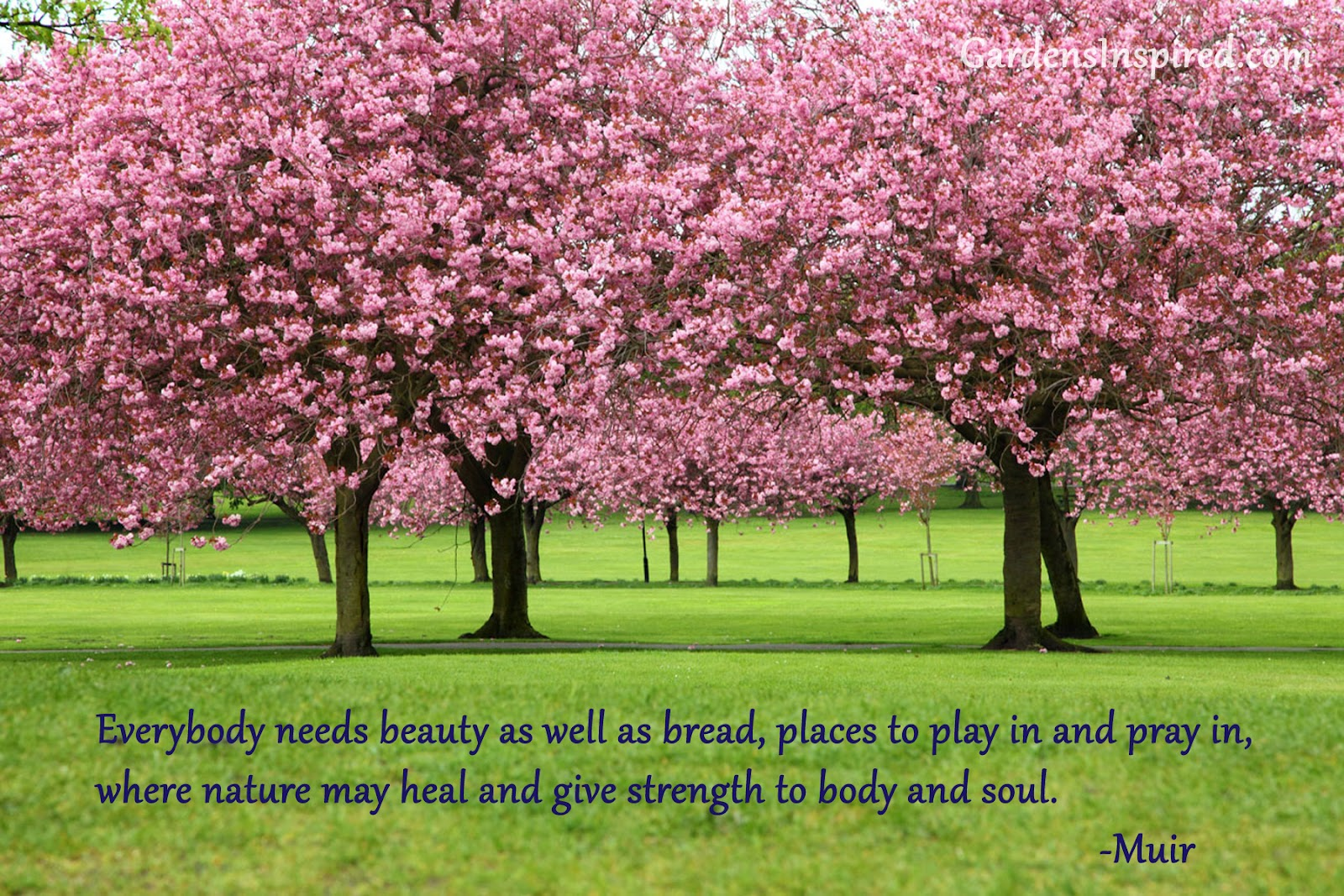 Beautiful Nature Wallpapers For Facebook Cover Page