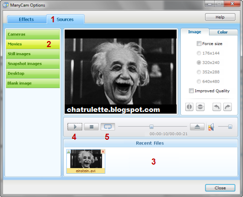 chatroulette web cam, chatroulette fake webcam, chatroulette sahte kamera programı
