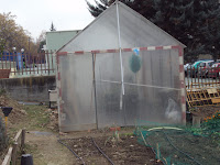 invernadero semillero huerto escolar