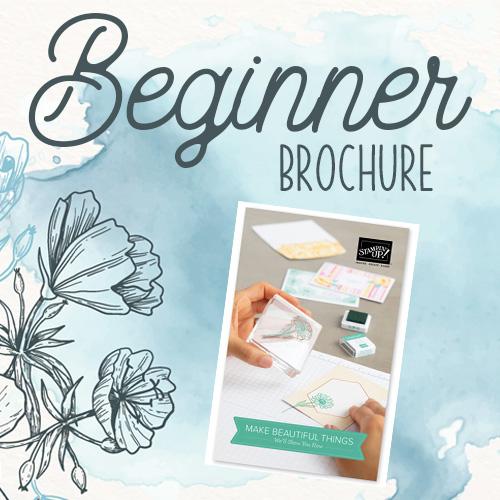 Beginner Brochure