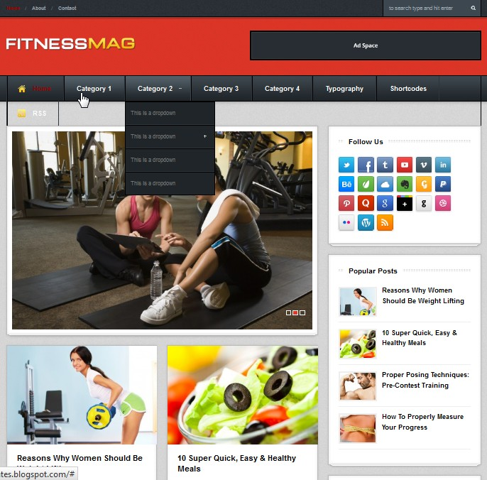 FitnesMag blogger template collection