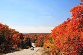 Fall foliage in Ontario. (Credit: aiko99ann, Wikimedia Commons) Click to enlarge.