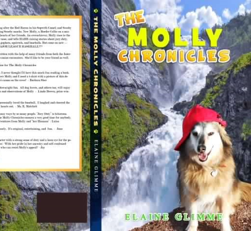 The Molly Chronicles