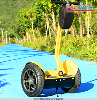 2 Wheel Stand-up Scooter Segway Electric Scooter