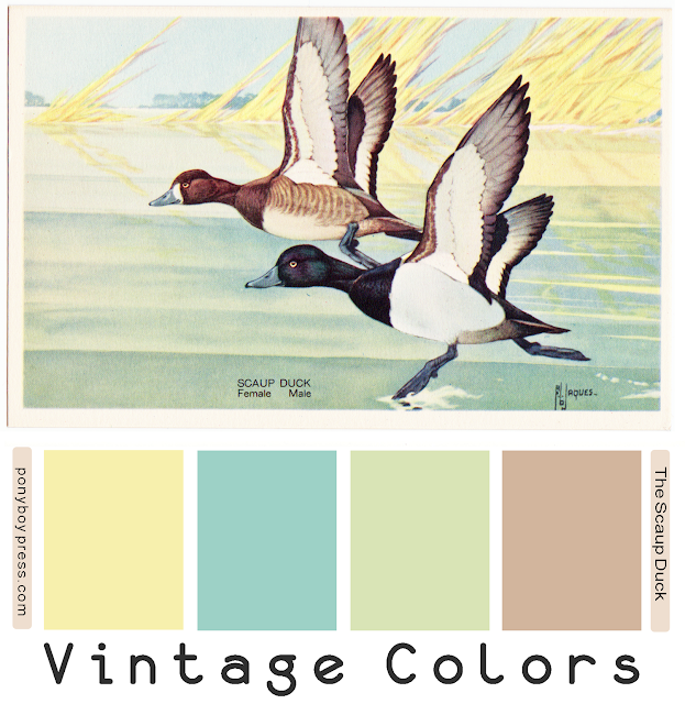 The Scaup Ducks pastel; color palette from vintage postcard - ponyboypress.com. Hex codes on the blog.