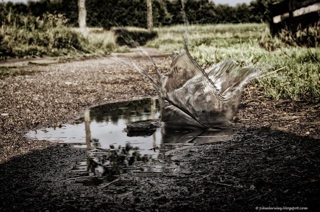 deszcz, kałuża, dzieci, lato