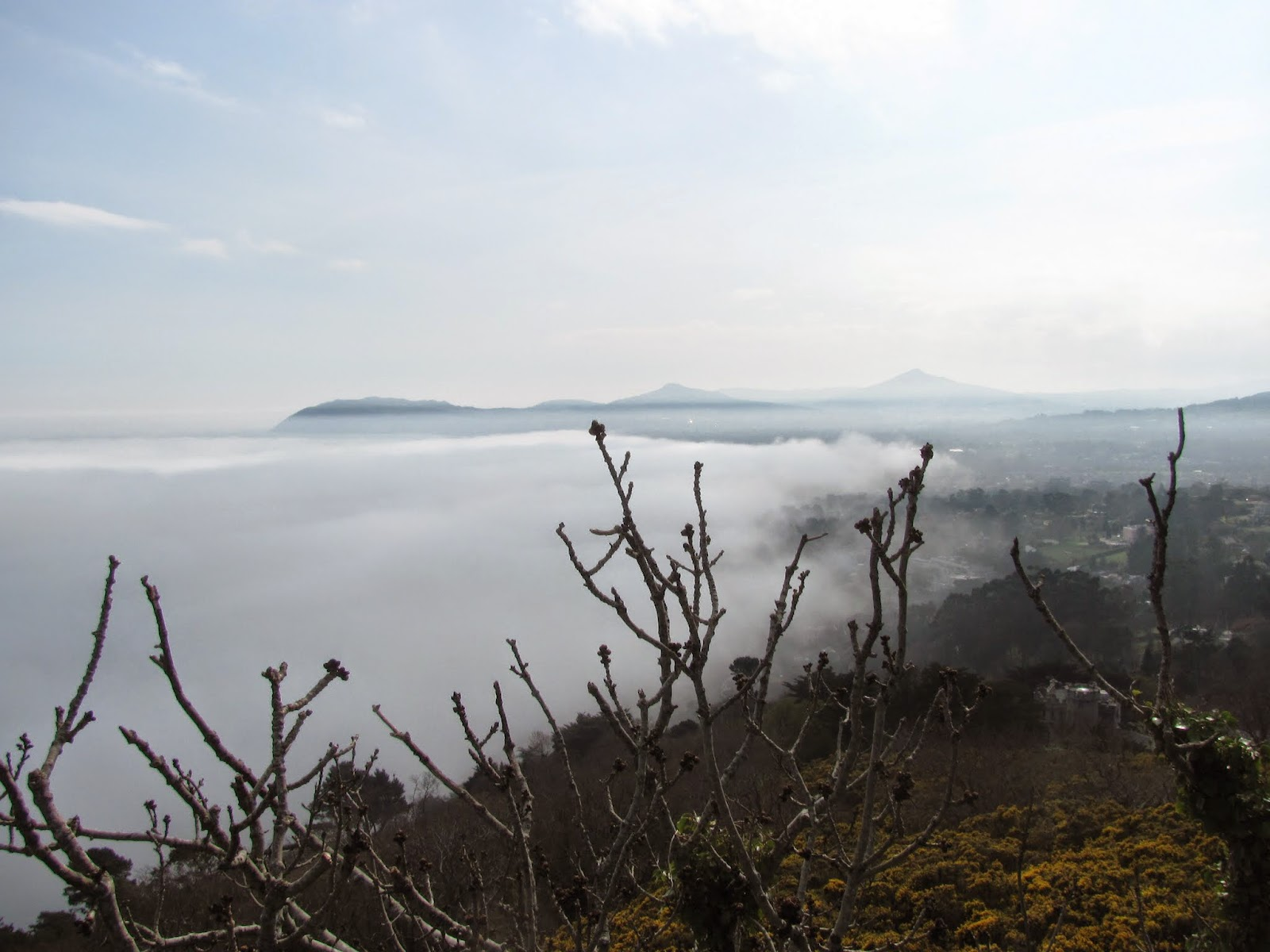 Fog Dying over Land Killiney, Dublin, Ireland