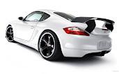 #21 Porsche Wallpaper