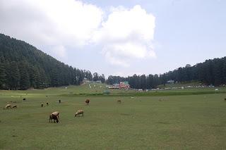 Khajjiar Himachal Pradesh