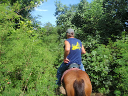 riding through the bush