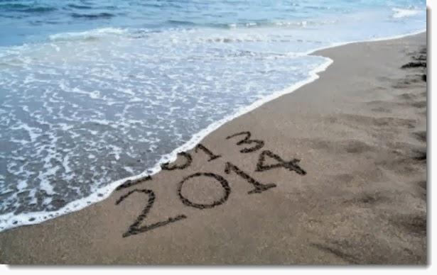 Adios Año 2013