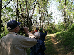 May 7 2016 Birding Group
