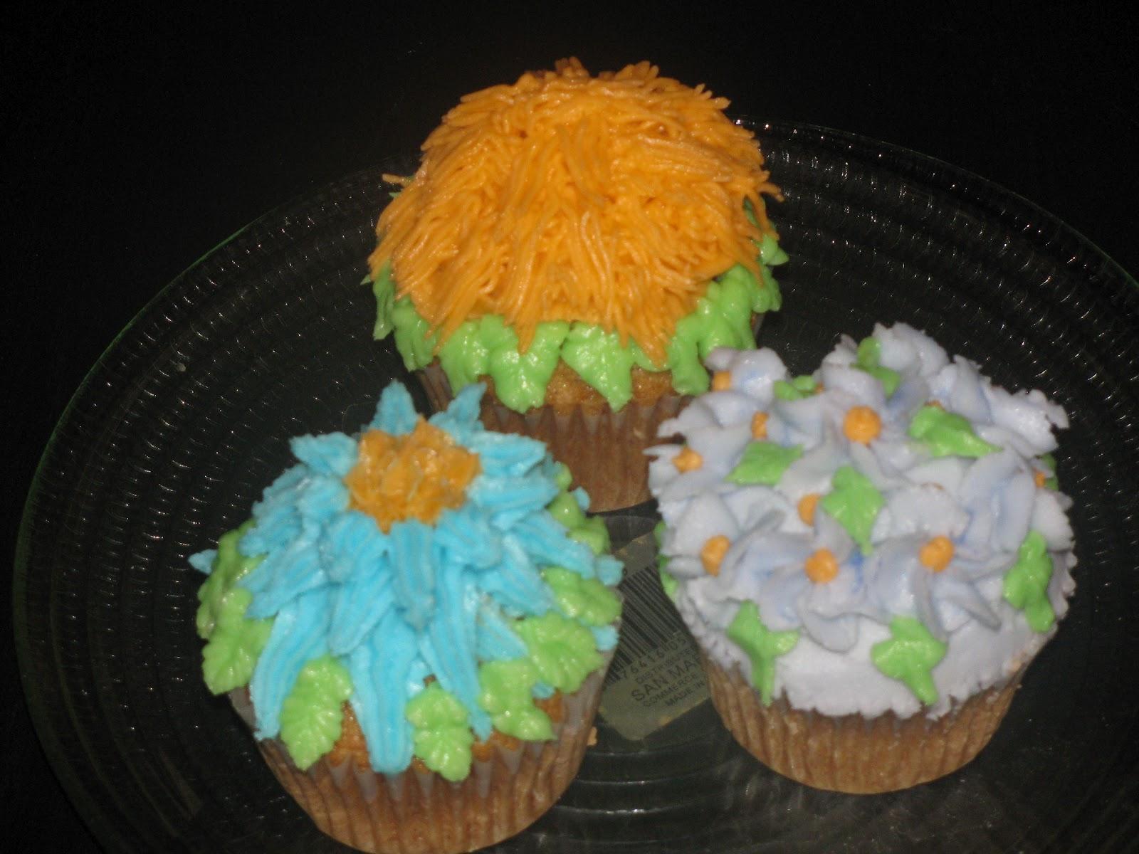 Divya s culinary journey: Wilton basic cake decorating ...