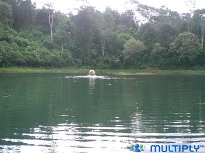 Indahnya Danau Parahyangan Situ Cibeureum