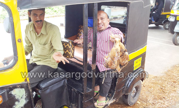 Chicken, Kasaragod, hospital, Lorry, Case, Kerala, Kerala News, International News, National News, Gulf News, Health News.