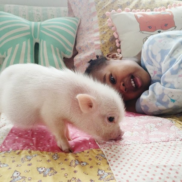 Both of these lovely girls were adopted into this loving family - The Heartmelting Friendship Of A 2-Year-Old Girl And Her Piglet