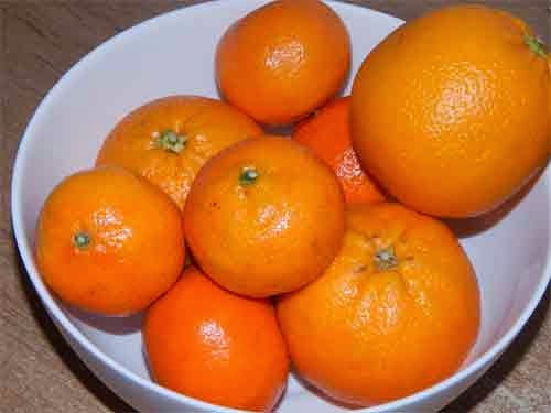 naranjas y mandarinas caseras