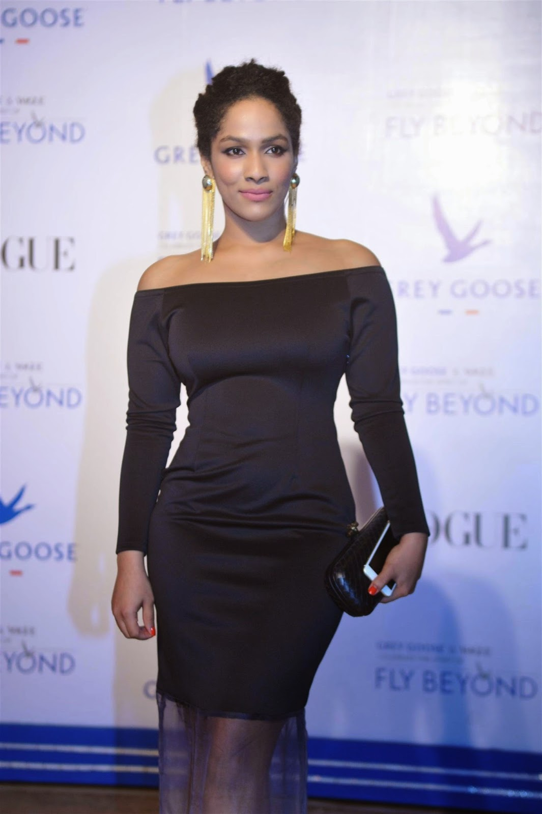 Bollywood Celebs at Grey Goose Fly Beyond Awards 2014 Pics