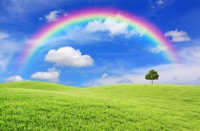 rainbow over green field