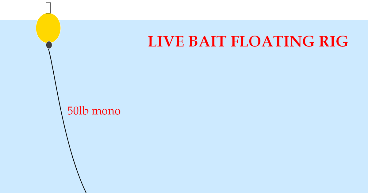 How to Rig Live Bait 11 Steps (with Pictures) - wikiHow