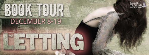 http://yaboundbooktours.blogspot.com/2014/10/blog-tour-sign-up-letting-by-cathrine.html