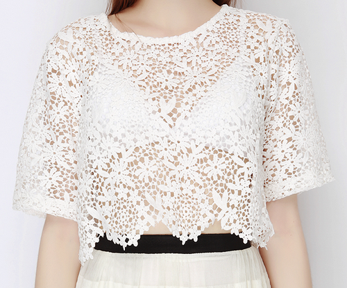 Baby's Breath Crochet Lace Top