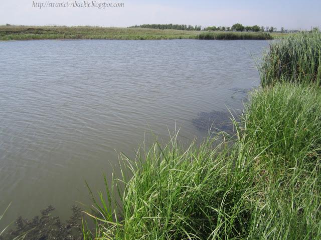р.Тузлов, рыбалка на реке Тузлов
