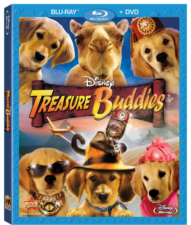 home cinema dvd avi: