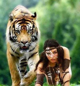 2015: TIGRE no hemisfério Sul