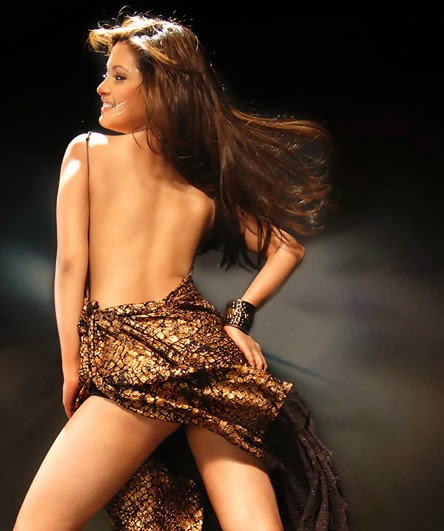 Riya Sen backless hot pics unseen rare sexy hot collection pics blue dress pics of riya sen hd hot pics