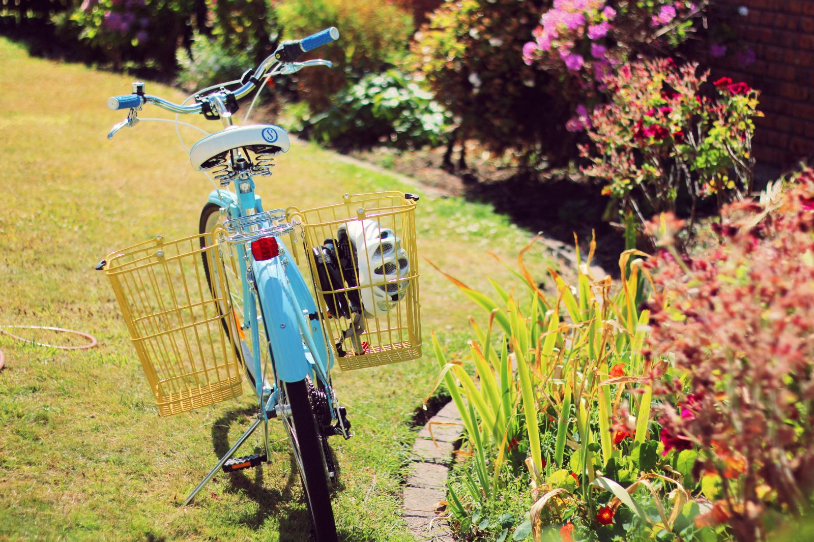 Bicycle Bicycle Basil Memories Bottle Basket