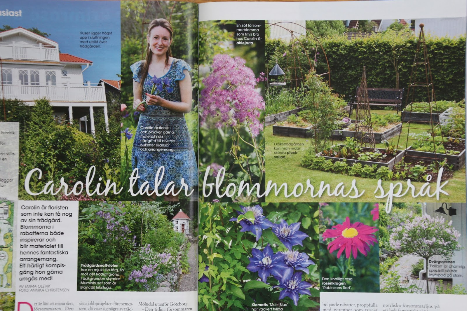trädgårdsreportage