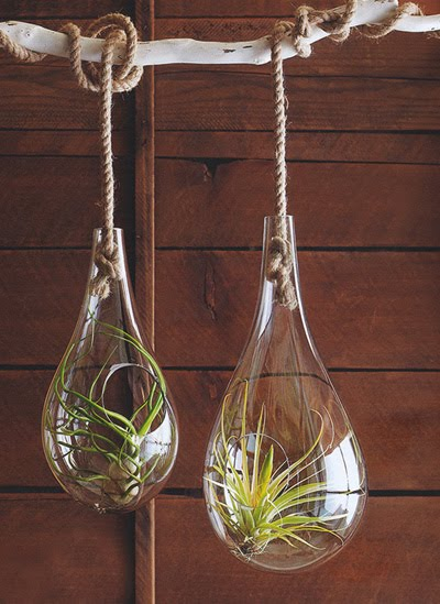 Indoor Air Hanging Planter Modern Design By