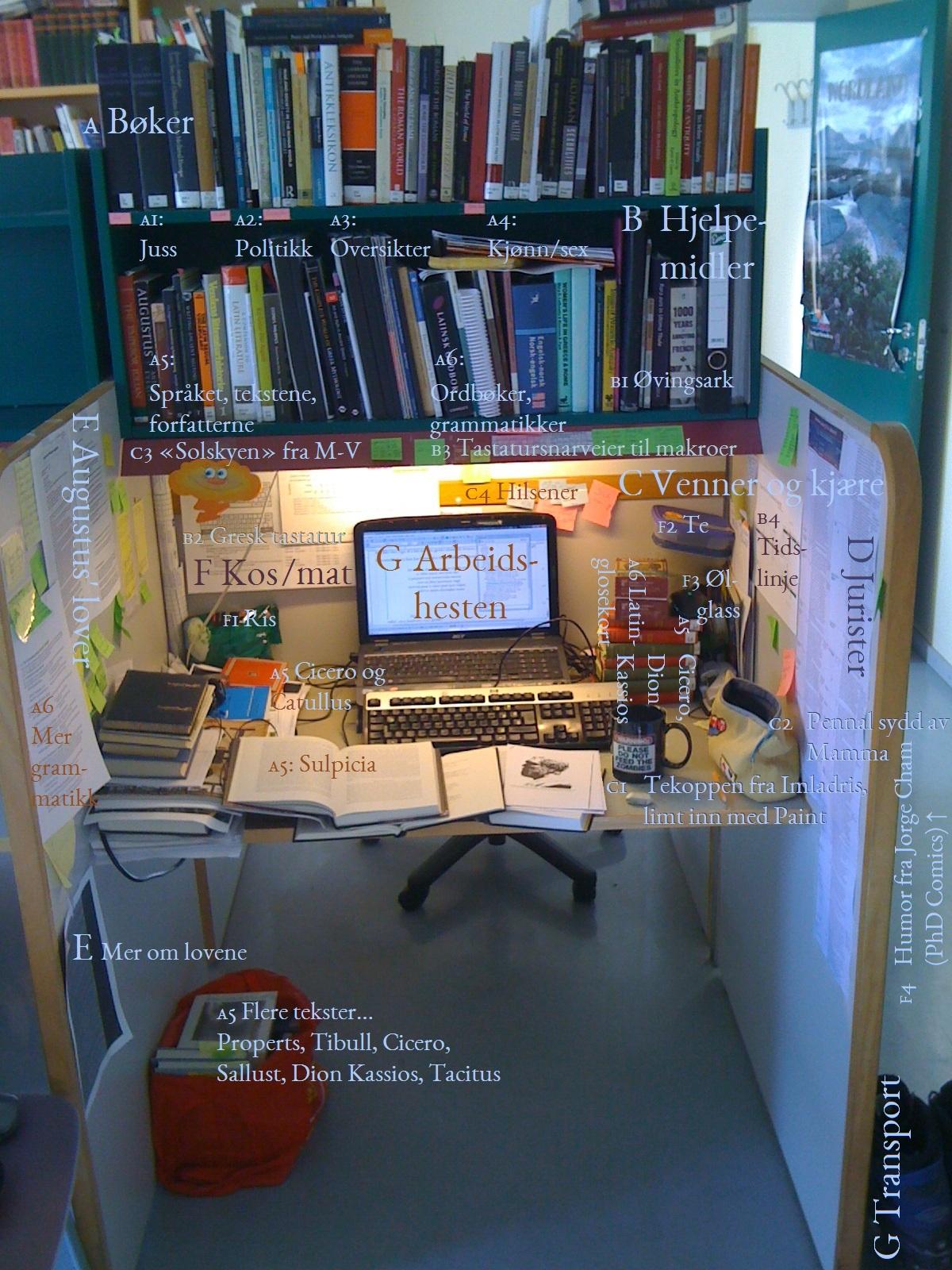 Masterstudentlesesalsplassen min på UiT. Bilde av bøker om latin, grammatikk, juss, kjønn, sex, seksualitet og mye annet. Foto: Tor-Ivar Krogsæter.