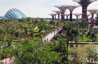 tempat wisata di singapore, wisata singapore, wisata di singapura, tujuan wisata di singapore, taman hijau