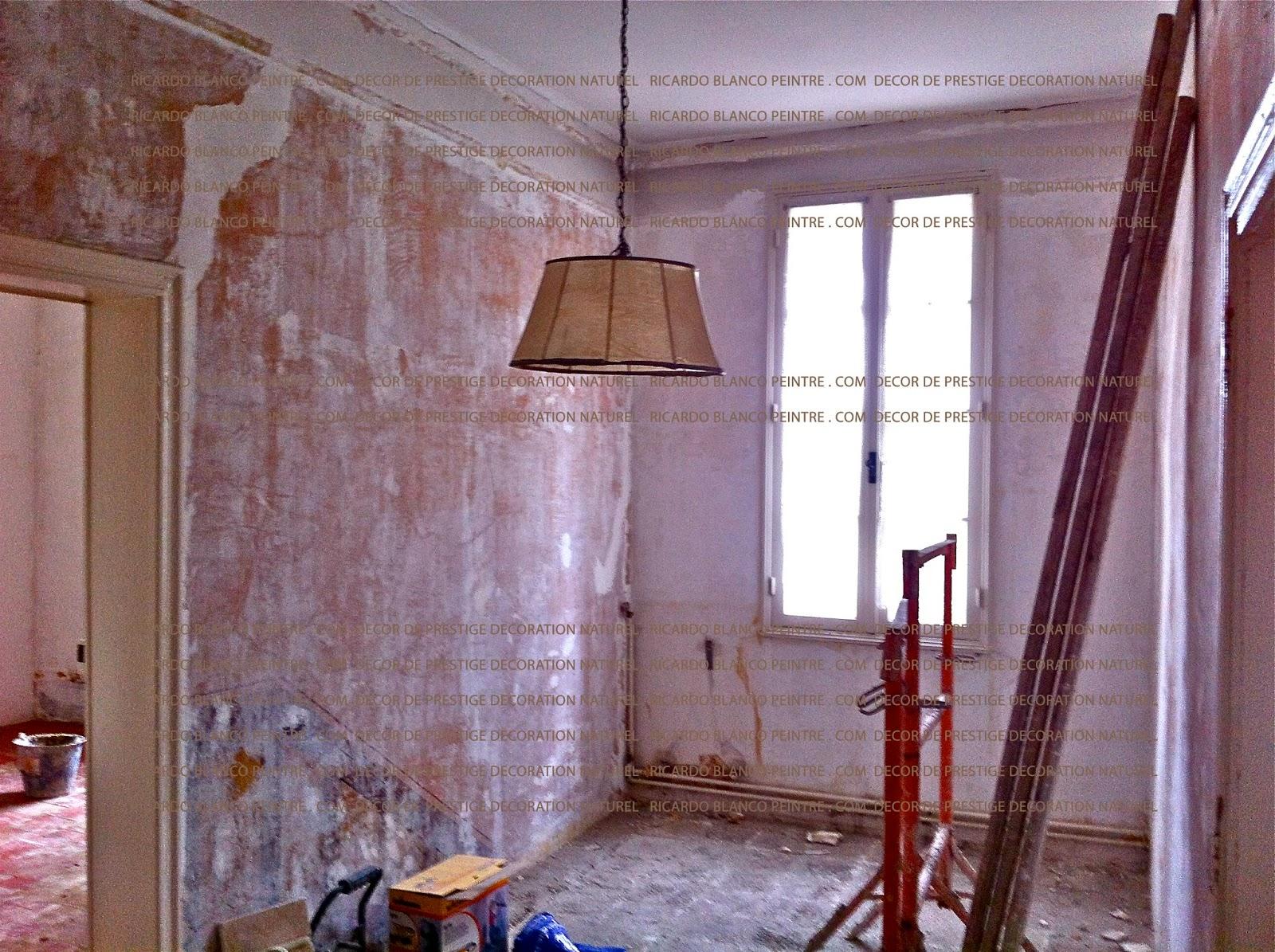 Ricardo blanco peinture d coration la chaux naturelle for Peintre decorateur interieur
