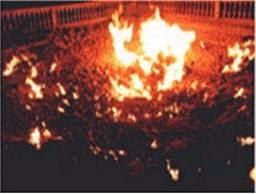 Api abadi becukuk mojokerto