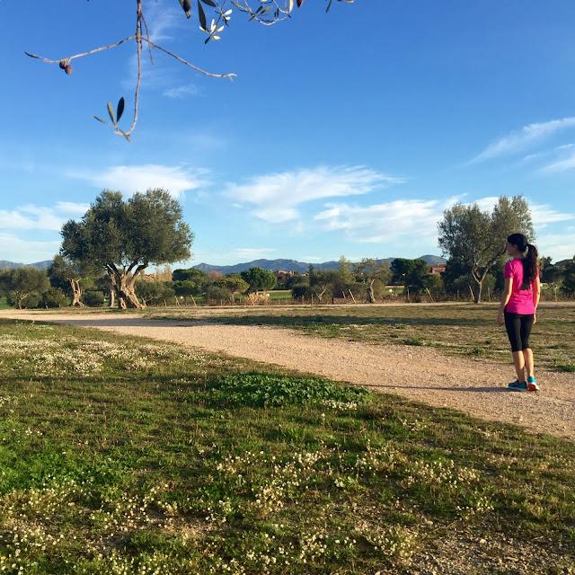 Mi Diario Runner, blog running